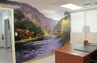 Wall Murals and Wall Graphics West Palm Beach FL